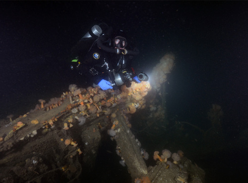 diver in the water with shipwreck